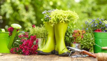 Aménager son jardin : les nouvelles tendances