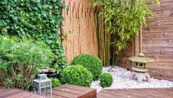 Profiter d'un jardin agréable toute l'année