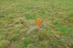 Terrain à Saint Mars du Désert 44850 322m2 65000 € - BF-19-01-21-3