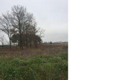 Terrain à Villeneuve lès Bouloc 31620 1100m2 120000 € - JCHA-19-02-12-1