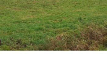 Terrain à Sixt sur Aff 35550 997m2 28900 € - MDU-18-05-22-14