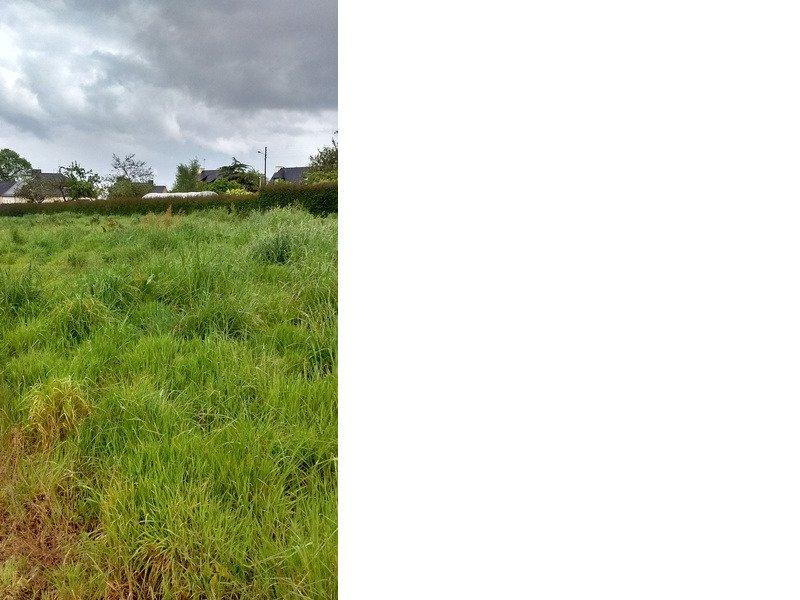 Terrain à Pommeret 22120 290m2 22000 € - JBES-18-06-20-9