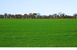 Terrain à Locoal Mendon 56550 352m2 52800 €