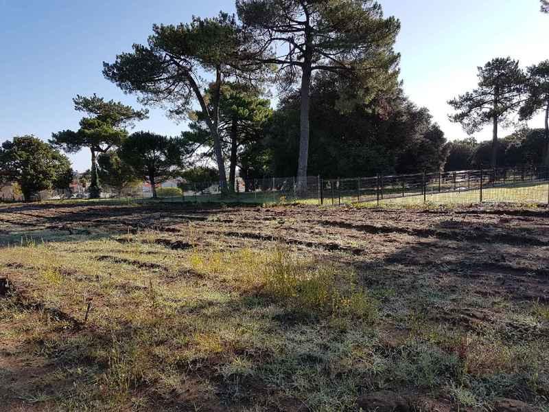 Terrain à Meschers sur Gironde 17132 667m2 99839 € - OBE-18-07-19-2