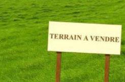 Terrain à Aigrefeuille d'Aunis 17290 339m2 56800 €