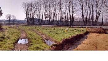 Terrain à Brest 29200 313m2 57500 € - GLB-19-05-02-2