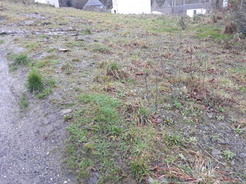 Terrain à Plouvien 29860 500m2 47500 € - DPOU-18-08-05-31