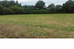 Terrain à Clohars Fouesnant 29950 501m2 54900 € - EDE-19-04-21-10