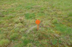 Terrain à Erbray 44110 700m2 21000 € - BF-19-10-08-2