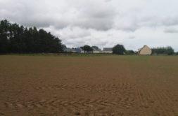 Terrain à Plouzévédé 29440 1166m2 40000 € - SME-19-04-05-43