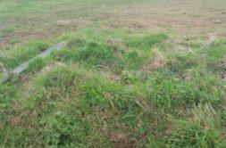 Terrain à Ploufragan 22440 406m2 44660 € - SMO-20-02-17-14