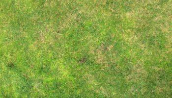 Terrain à Saint Barnabé 22600 693m2 9348 € - CHO-20-05-11-11