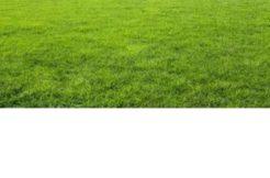 Terrain à Cordemais 44360 366m2 55000 € - GLA-18-12-12-3