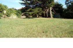 Terrain à Sainte Soulle 17220 420m2 95000 € - ECHA-19-02-01-7
