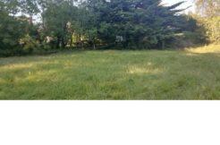 Terrain à Sainte Anne d'Auray 56400 450m2 45000 € - YM-19-07-19-7