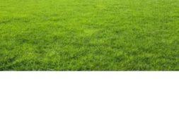 Terrain à Plouezoc'h 29252 677m2 49900 € - DM-19-09-30-10