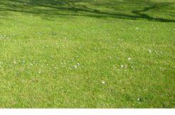 Terrain à Petit Fougeray 35320 497m2 48000 € - VCHA-20-05-09-143