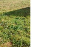 Terrain à Pordic 22590 450m2 40000 € - JBES-20-11-10-6