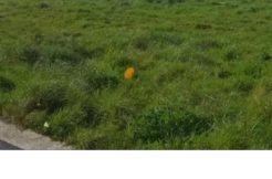 Terrain à Trémuson 22440 436m2 45780 € - SMO-19-08-12-1