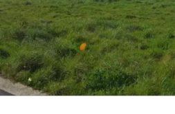 Terrain à Trémuson 22440 436m2 45780 € - SMO-20-03-09-18