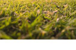 Terrain à Locoal Mendon 56550 308m2 46200 € - VB-19-09-20-7
