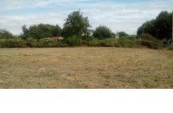 Terrain à Ferrières 17170 301m2 39130 € - ECHA-19-10-18-8