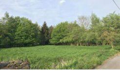 Terrain à Saint Sauveur d'Aunis 17540 442m2 60100 € - EBOUR-19-11-06-2