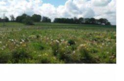 Terrain à Bourbriac 22390 596m2 8940 € - AGEL-19-12-04-10
