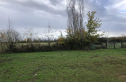 Terrain à Lherm 31600 1030m2 129000 € - CLE-20-03-11-5