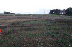Terrain à Lamballe 22400 462m2 37000 € - SMO-20-03-09-9