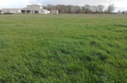 Terrain à Tonnay Charente 17430 526m2 55300 € - LGUI-20-03-12-23