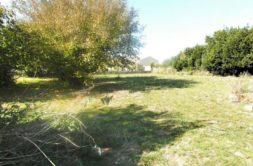 Terrain à Pibrac 31820 1525m2 249900 € - YSA-20-05-29-17