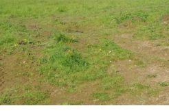 Terrain à Pommerit-le-Vicomte 22200 845m2 22800 € - AGEL-20-06-15-4