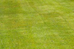 Terrain à Chapelle-des-Marais 44410 456m2 44300 € - MGUR-21-01-14-2