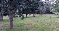 Terrain à Locminé 56500 1102m2 60610 € - MLEF-20-12-24-5