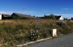Terrain à Plerneuf 22170 420m2 37800 € - ADES-21-02-05-22