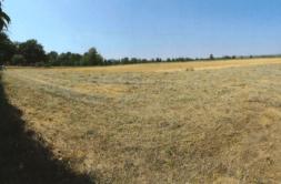 Terrain à Revel 31250 1109m2 66000 € - CDAV-21-04-12-1
