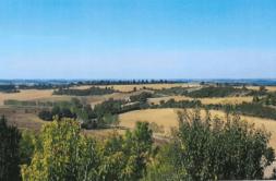 Terrain à Revel 31250 1153m2 58000 € - CDAV-21-02-05-4