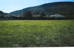 Terrain à Sorèze 81540 1300m2 60000 € - CDAV-21-02-05-5