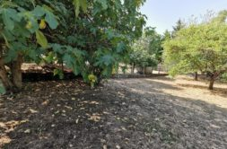 Terrain à Aussonne 31840 538m2 138500 € - CROP-20-10-07-80