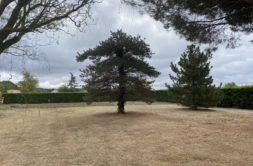 Terrain à Labarthe-sur-Lèze 31860 1160m2 150000 € - RCAM-20-09-25-1