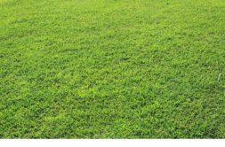 Terrain à Maintenon 28130 442m2 84990 € - EMLU-20-12-11-101