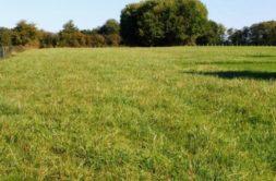 Terrain à Rieux-Volvestre 31310 753m2 54000 € - YSA-20-10-16-20