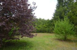 Terrain à Martres-Tolosane 31220 3023m2 130000 € - YSA-21-02-02-8