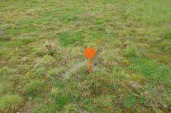 Terrain à Montbert 44140 385m2 79500 € - BF-20-11-16-5