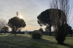 Terrain à Labarthe-sur-Lèze 31860 1165m2 155000 € - CLE-21-01-25-1