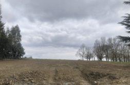 Terrain à Drémil-Lafage 31280 835m2 235000 € - CDAV-21-01-08-1