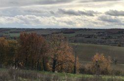 Terrain à Villeneuve-lès-Bouloc 31620 1700m2 158000 € - EHEN-21-06-15-7