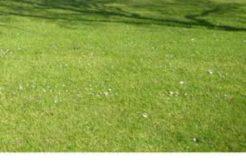 Terrain à Paimpol 22500 560m2 92000 € - LCHAR-21-04-22-11