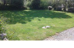 Terrain à Plaisance du Touch 31830 515m2 176000 € - CROP-20-05-29-2